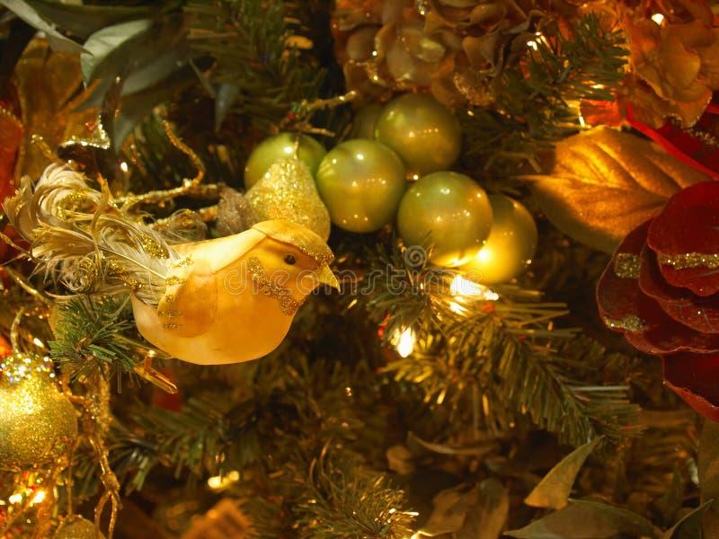 Ornamento amarillo fotos de archivo libres de regalías