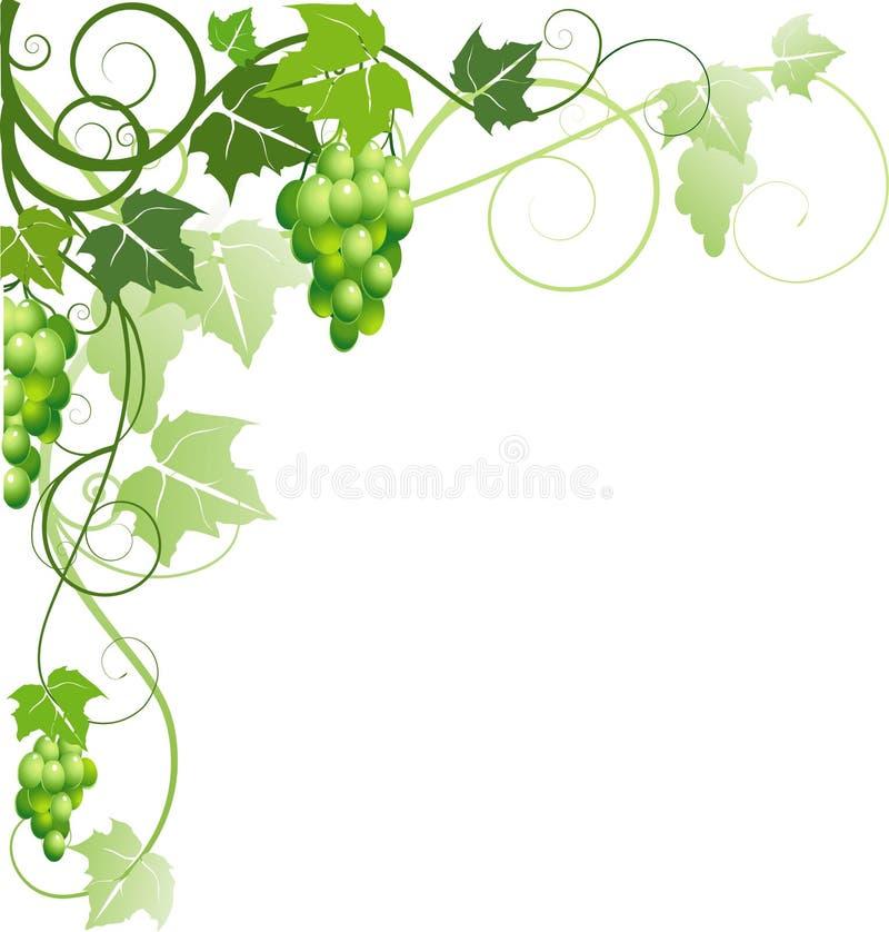 Ornamento con l'uva illustrazione vettoriale