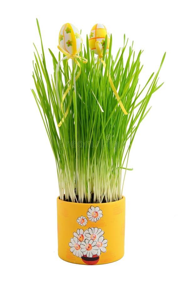 Ornamento de Easter no trigo novo foto de stock