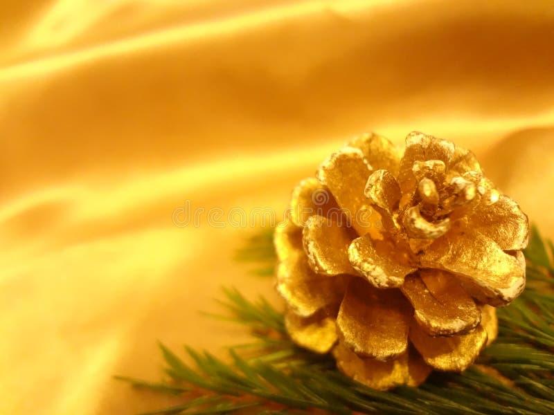 Ornamento de la Navidad con la rama del pinecone y del abeto fotos de archivo libres de regalías