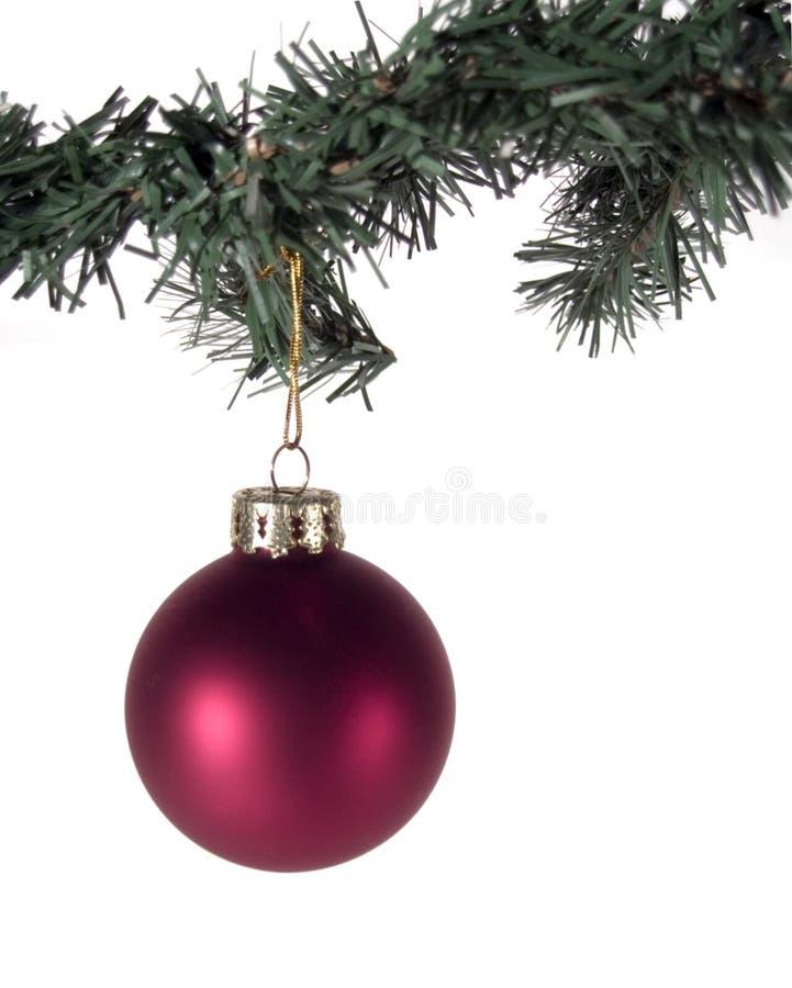 Ornamento de la Navidad y ramificación de árbol rojos fotografía de archivo