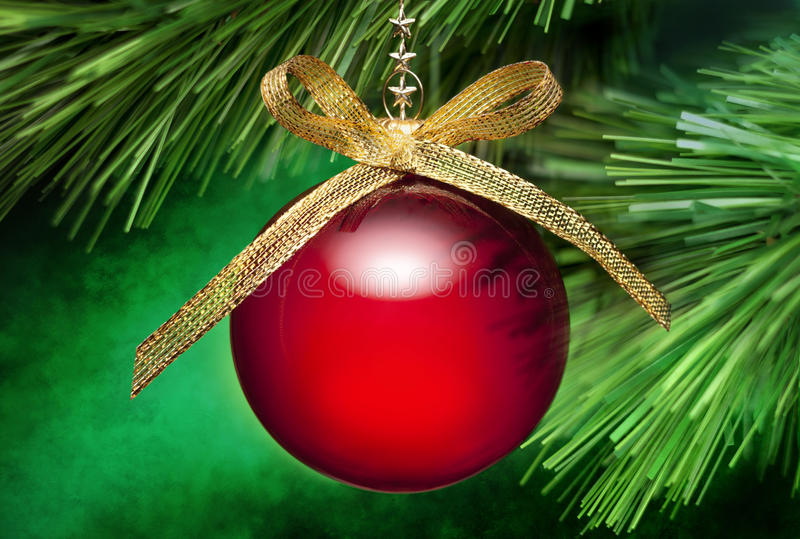 Ornamento de la ramificación del árbol de navidad foto de archivo libre de regalías