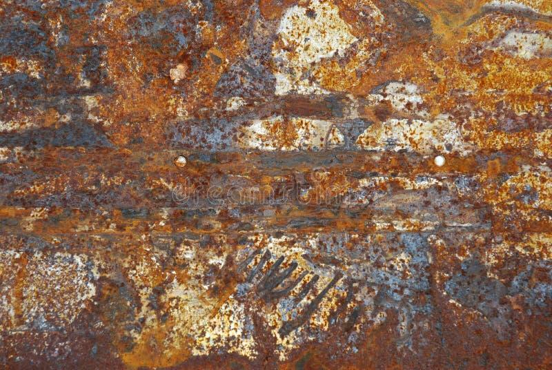 Ornamento del moho foto de archivo