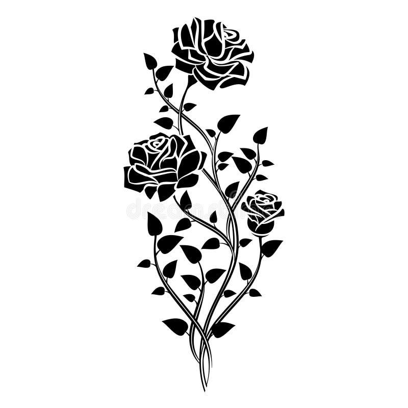 Ornamento delle rose Elementi decorativi di disegno floreale Vettore illustrazione di stock