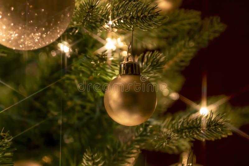 Ornamento do Natal do ouro que pendura em ramos de árvore fotografia de stock