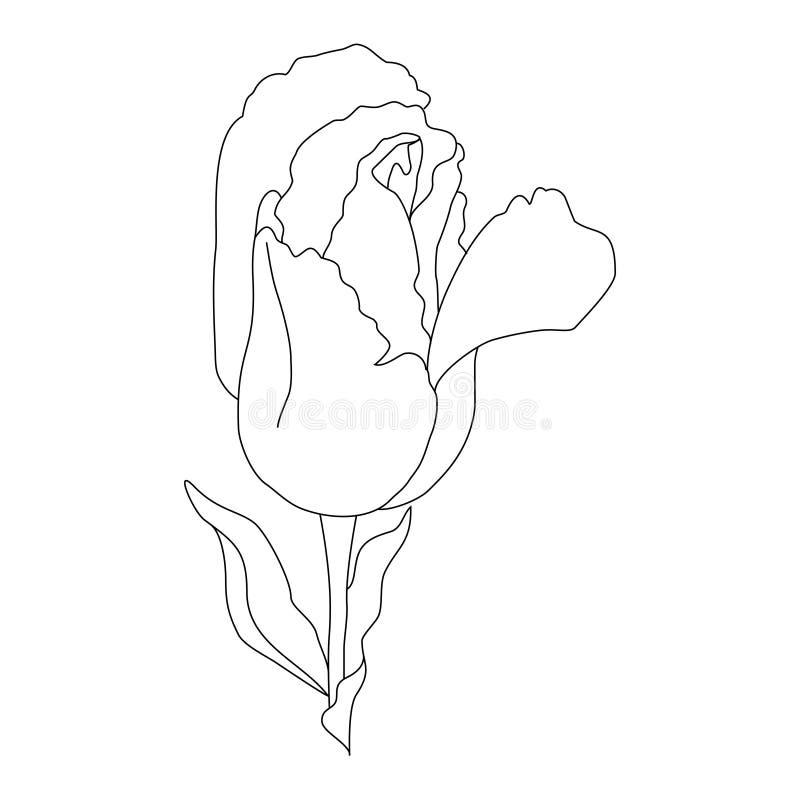 Ornamento floreale di motivo orientale immagini stock