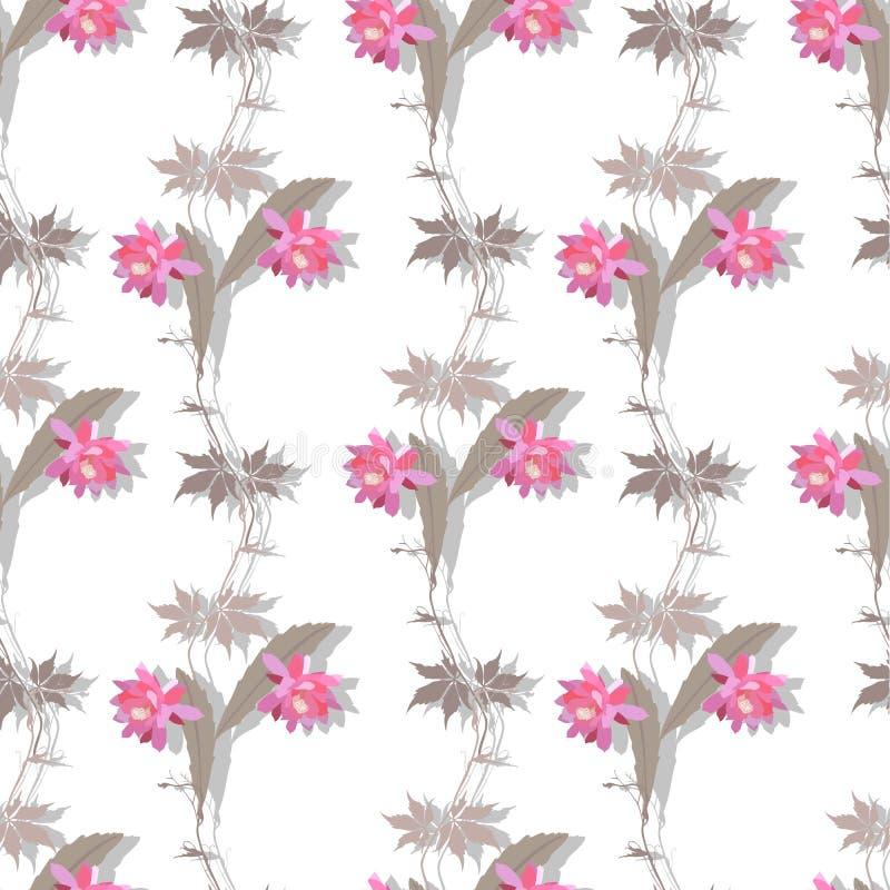 Ornamento natural com as flores do cacto e branchs cor-de-rosa luxuosos da videira virgem no fundo branco no vetor Cópia sem emen ilustração do vetor
