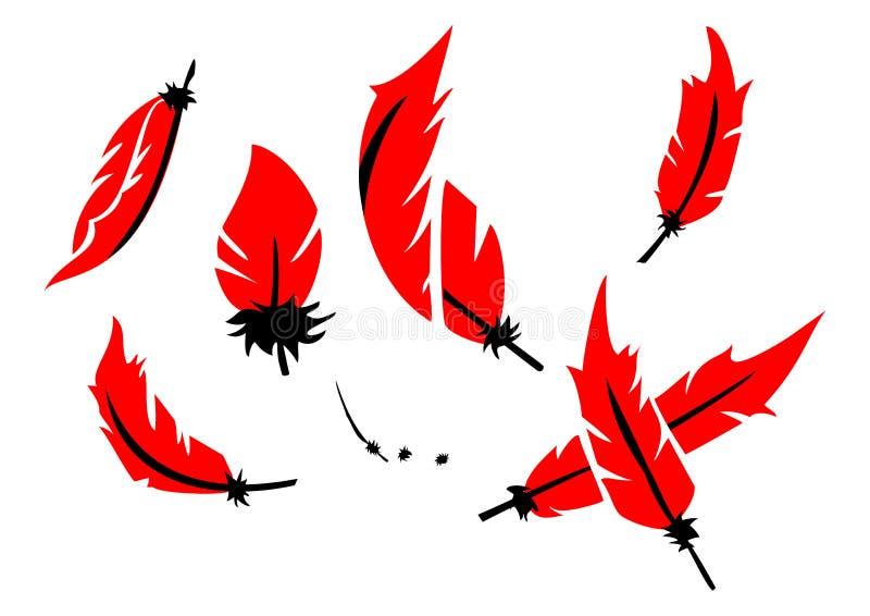 Ornamento rojo y negro de la pluma fotos de archivo libres de regalías