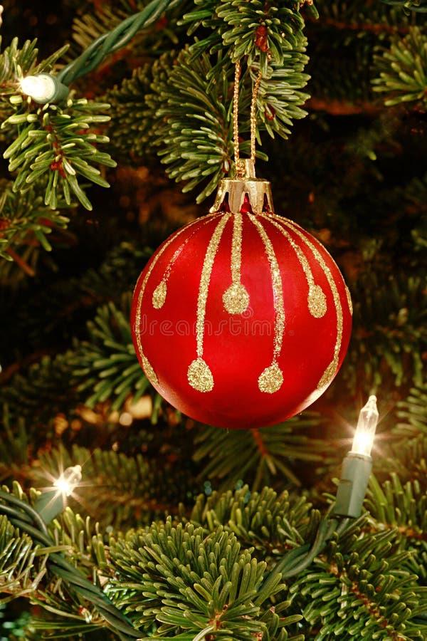 Ornamento rosso nell'albero di Natale fotografia stock libera da diritti