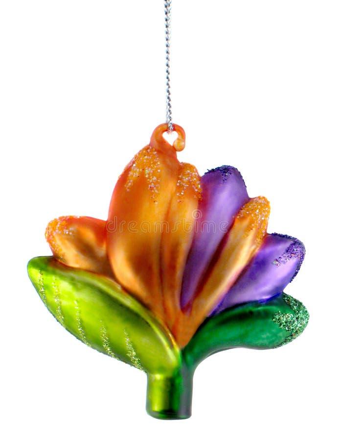 Ornamento tropical do Natal da flor fotografia de stock