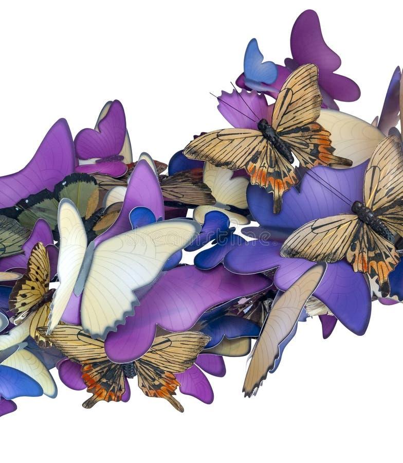 Ornamento variopinto della farfalla fotografie stock