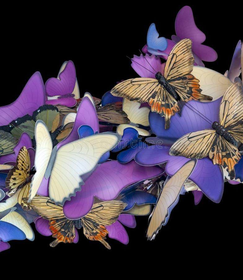Ornamento variopinto della farfalla fotografia stock libera da diritti