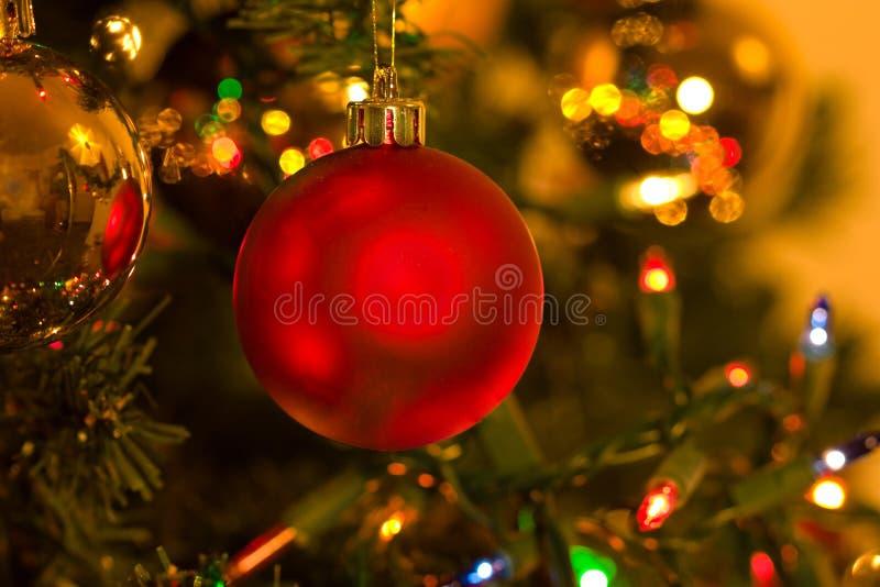 Ornamento vermelho do Natal na árvore de Natal imagem de stock
