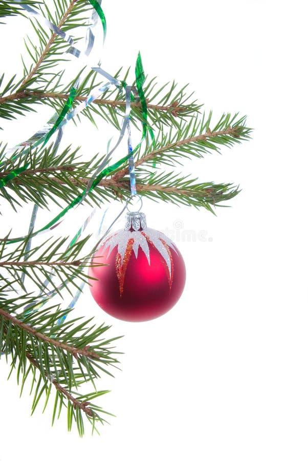 Ornamentos del árbol de navidad. fotografía de archivo