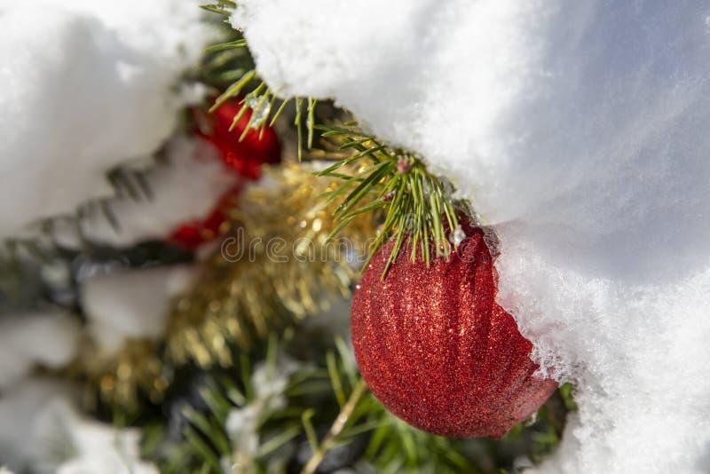 Ornamentos navideños cubiertos de nieve imagen de archivo libre de regalías