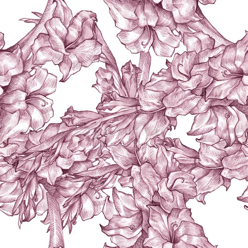 Botanical floral flower pencil drawing sketch seamless ornate pattern pink texture on white background for invitations royalty free illustration