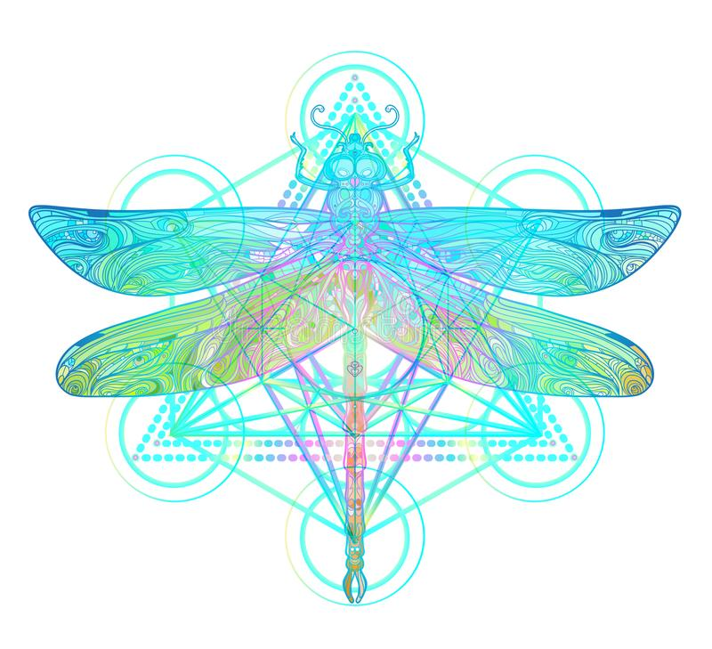Ornate dragonfly over colorful round mandala pattern. Ethnic pat. Terned vector illustration. African, indian, totem, tribal, zentangle design. Sketch for tattoo stock illustration