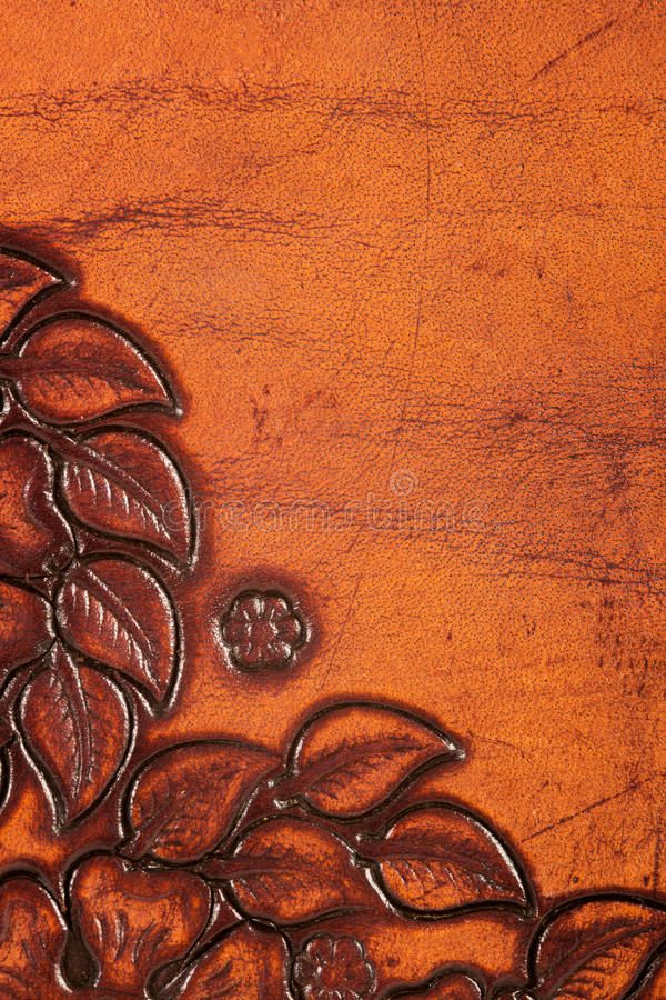 Download Ornate leather stock photo. Image of nature, wild, structure - 23532068