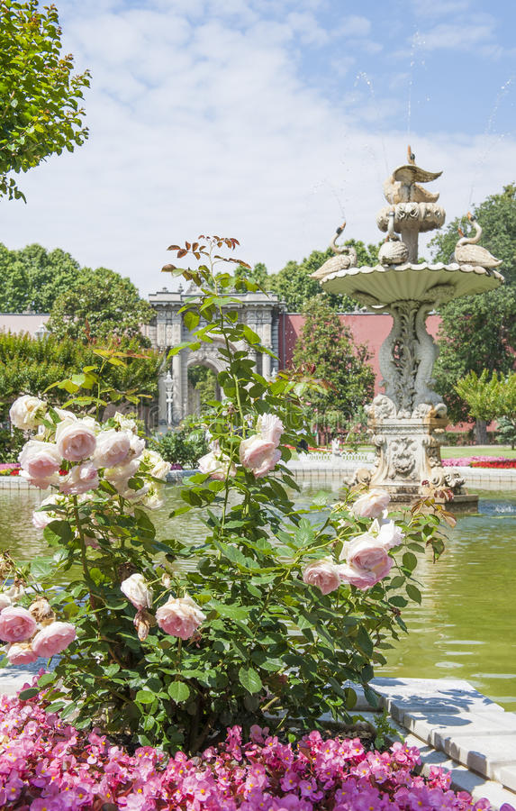 Ornate swan styled fountain in formal garden. Ornate carved swan fountain in pond of formal gardens at Dolmabahce Palace Istanbul Turkey stock photography
