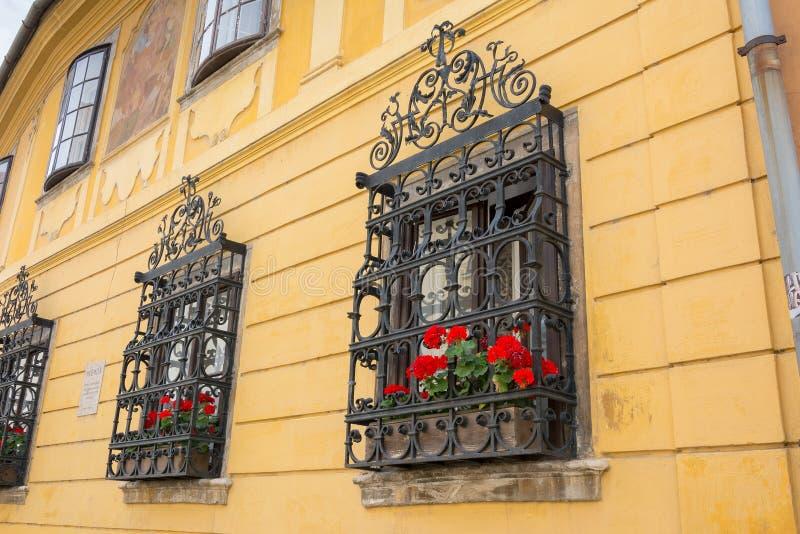 Ornate Wrought Iron Window Shutters Stock Image Image Of Frame Gothic 43831541
