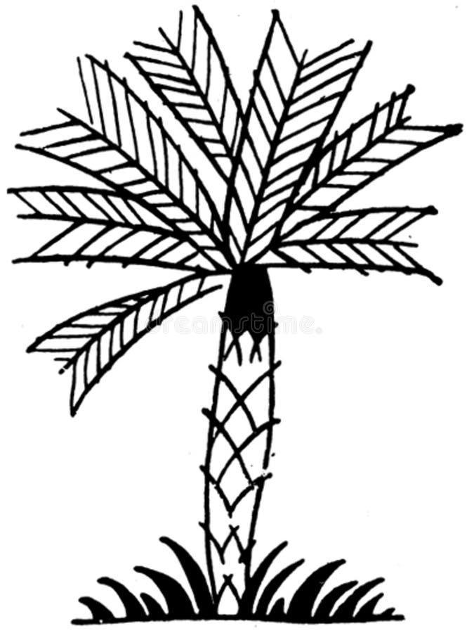 Ornement-004 Free Public Domain Cc0 Image
