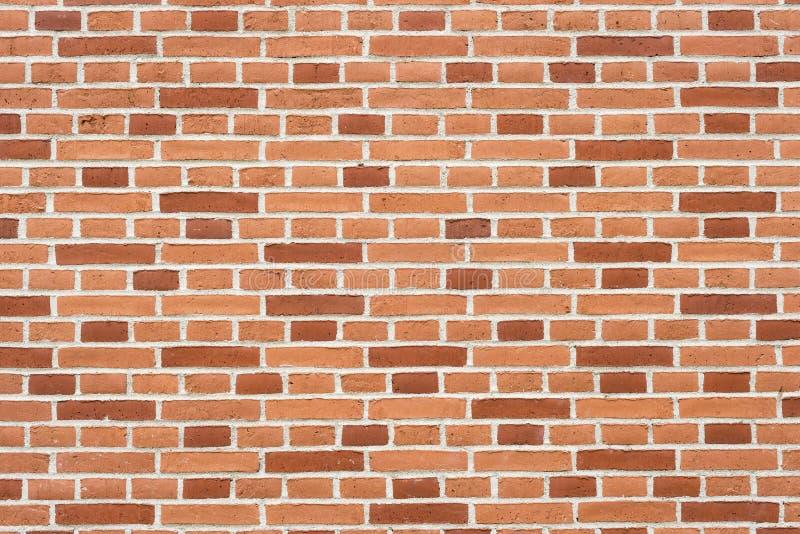 Ornement de mur de briques photos stock