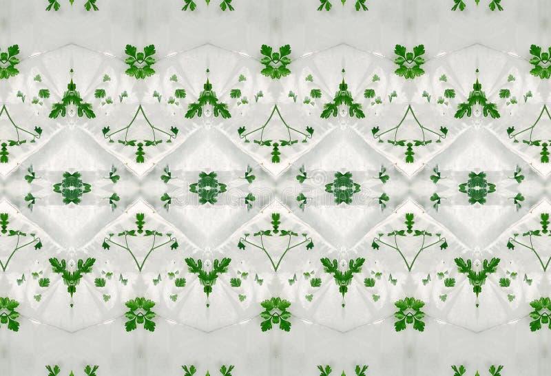 Ornement des feuilles de vert en glace photos libres de droits
