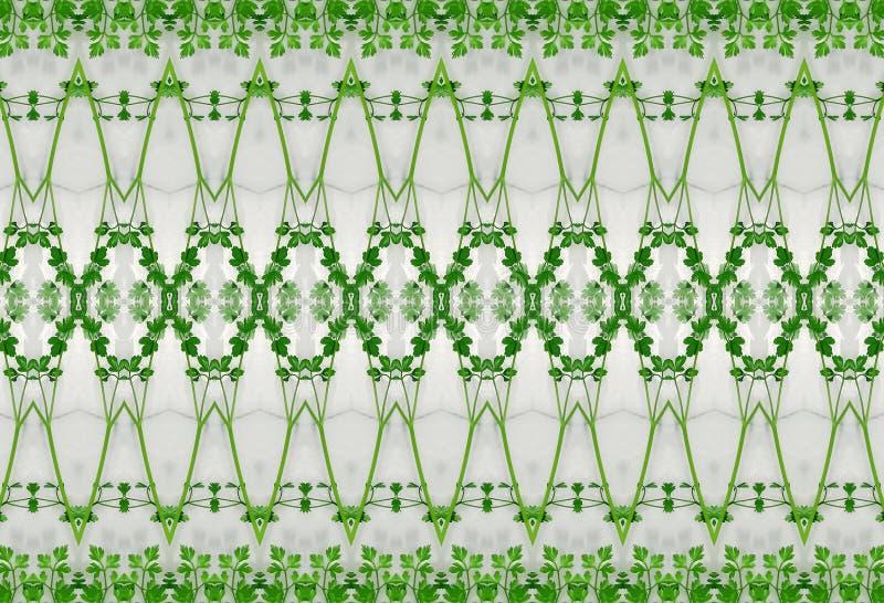 Ornement des feuilles de vert en glace image libre de droits