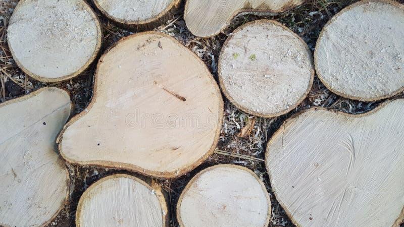 Ornement des morceaux en bois, unique et intéressant image stock