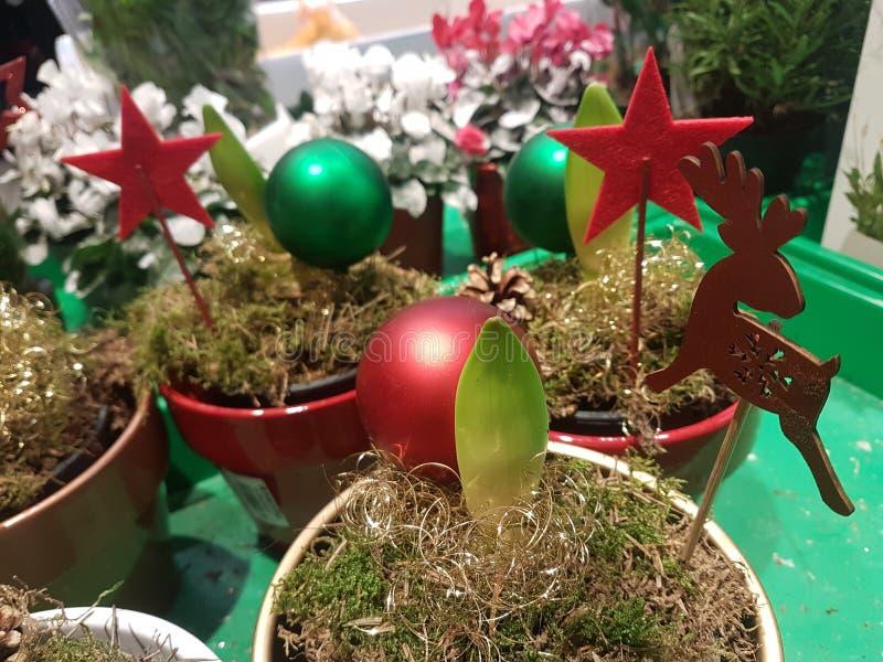 Ornements de Noël pour orner votre jardin photos libres de droits