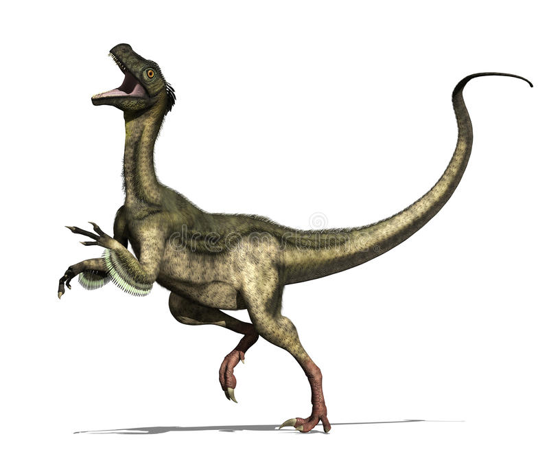 Ornitholestes Dinosaur. The ornitholestes dinosaur lived in North America during the late jurassic period - 3d render vector illustration