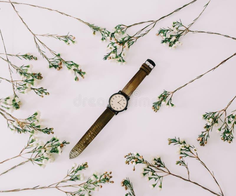 Orologio alla moda delle donne incorniciato dai rami e dalle foglie su fondo bianco accessori di modo femminili Disposizione pian immagini stock libere da diritti