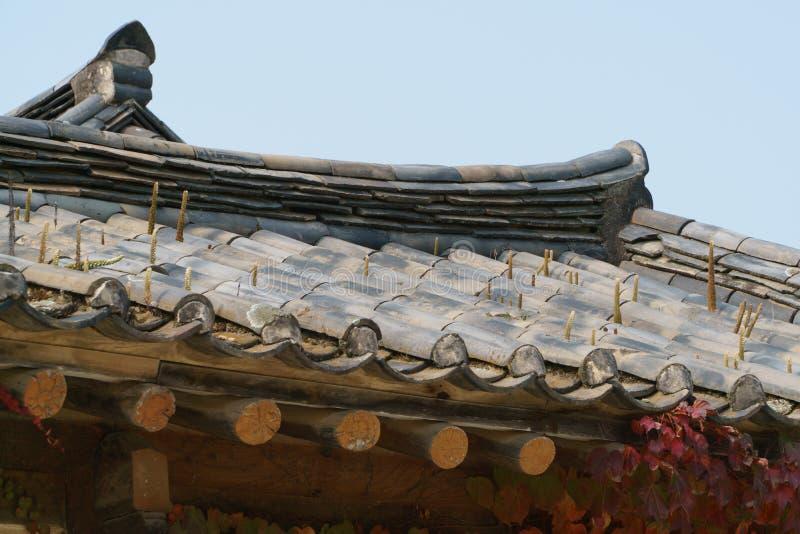 Orostachys gatunków rośliny na kafelkowym dachu obrazy royalty free