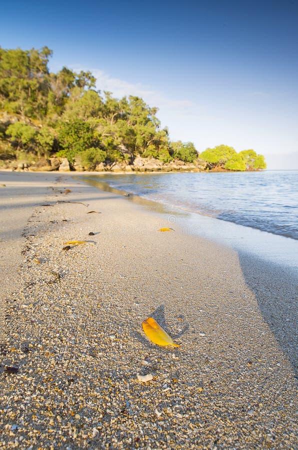 Orpheus Island lizenzfreie stockfotos