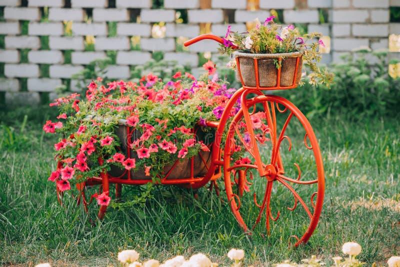 Orphie décorative de fleurs de panier d'Old Bicycle Equipped de modèle de cru photographie stock