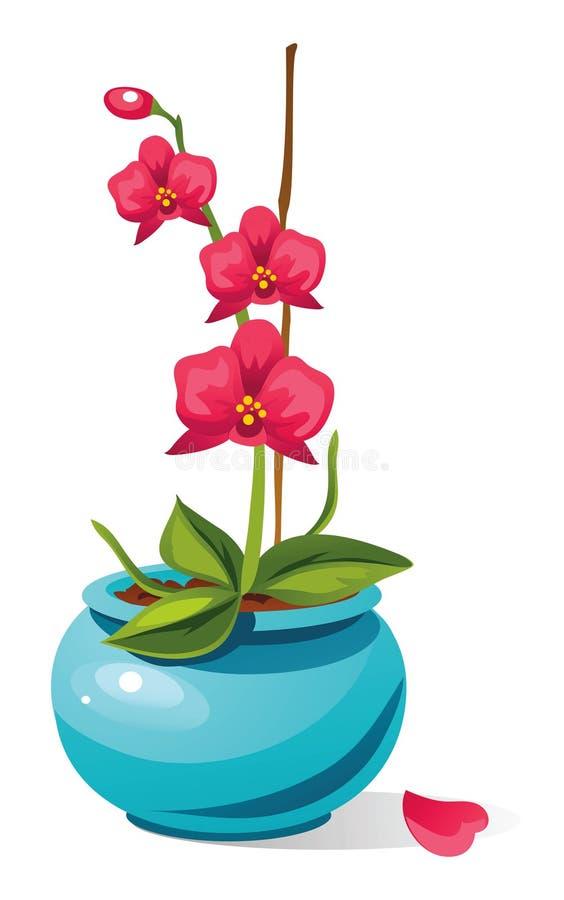 Orquídea bonita ilustração stock
