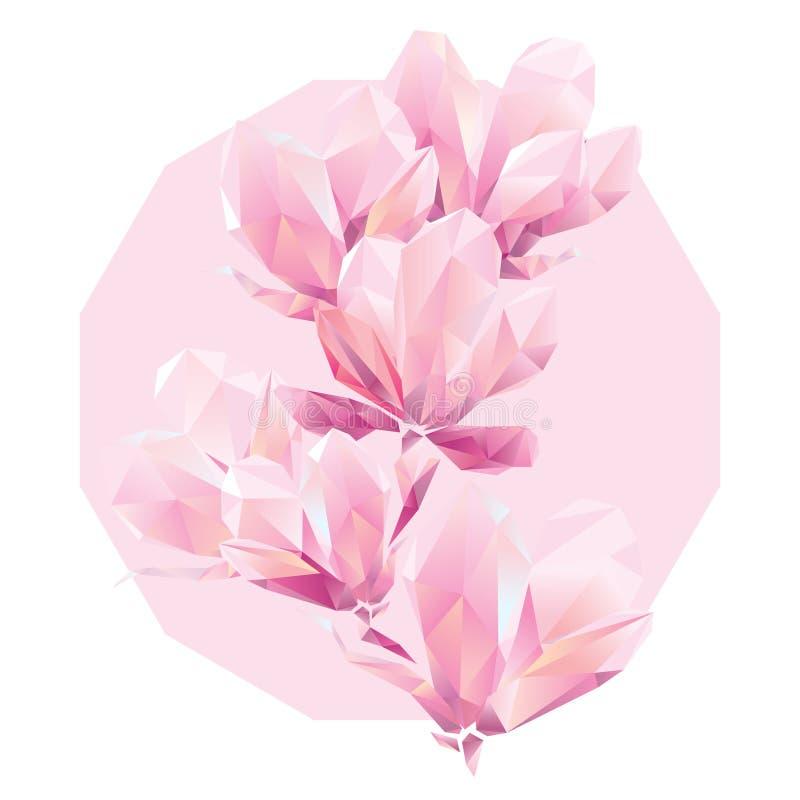 Orquídea de Crystal Pink, flores del polígono ilustración del vector