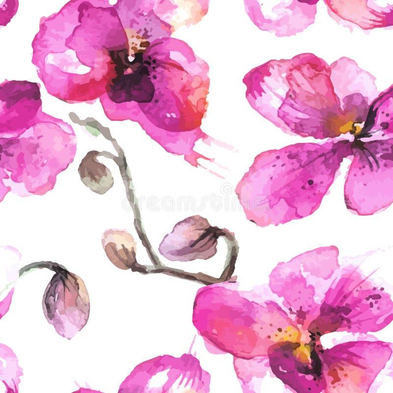 A orquídea desenhado à mão da aquarela floresce o fundo sem emenda ilustração stock