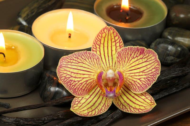 Orquídea e baunilha na terapia dos termas imagem de stock