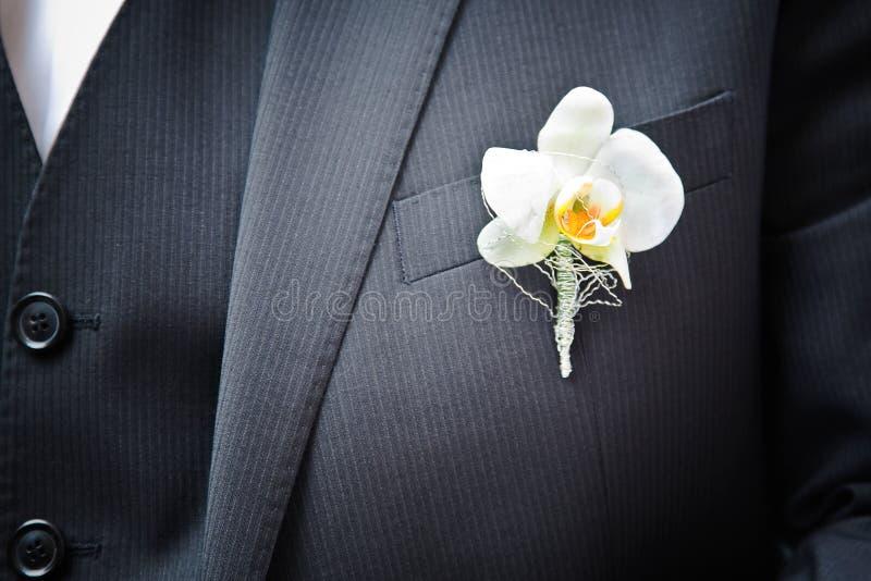 Orquídea en el juego imagen de archivo