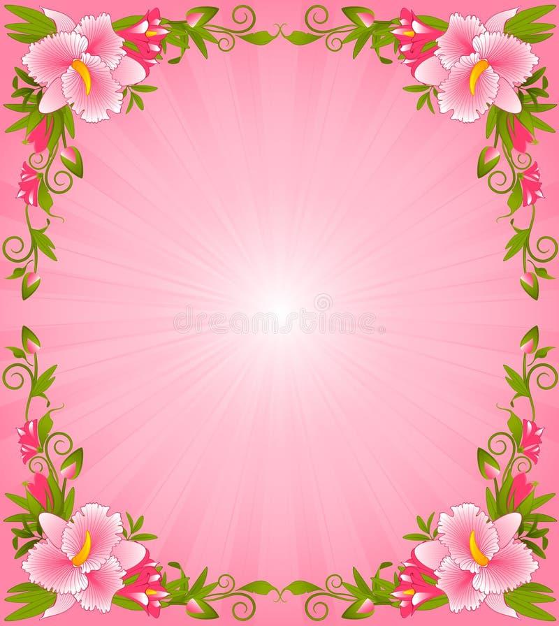 Orquídea hermosa stock de ilustración