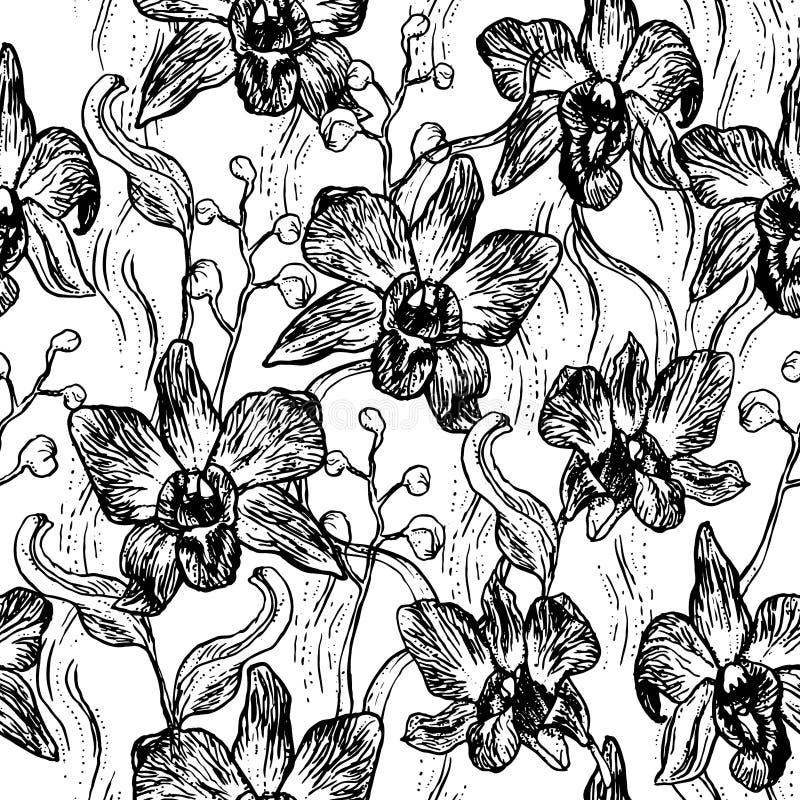 Orquídea hermosa Sistema dibujado mano aislado en el modelo inconsútil del fondo del negro del bosquejo blanco del contorno, dise ilustración del vector