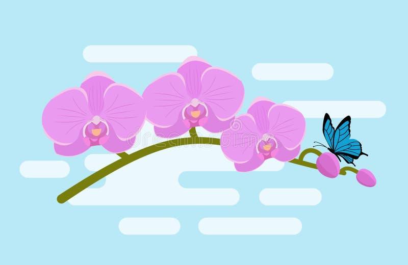 Orquídea no projeto liso Ilustração do vetor Fundo ilustração royalty free