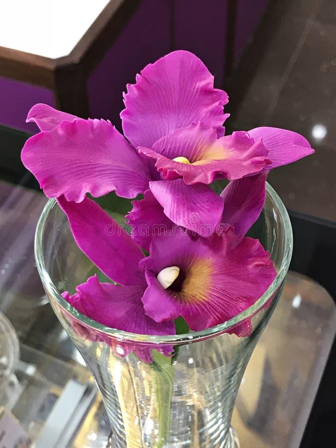 Orquídea rosada artificial excepcional y hermosa fotografía de archivo libre de regalías