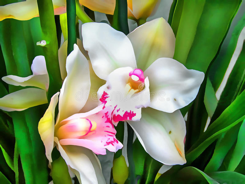 Orquídea tropical de la flor del modelo de la acuarela libre illustration