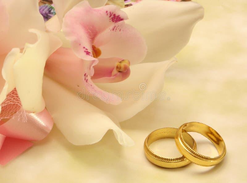 Orquídea y anillos de bodas imagen de archivo libre de regalías