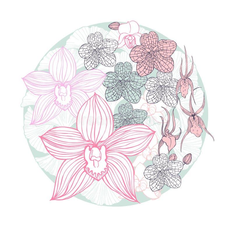 Orquídeas dibujadas mano en un círculo Ejemplo del bosquejo del vector libre illustration