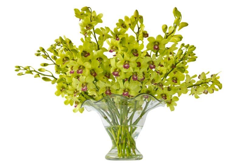 Orquídeas do Cymbidium em um vaso imagem de stock