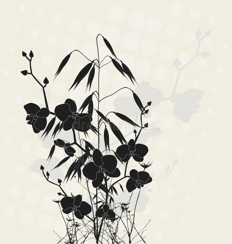 Orquídeas e aveia ilustração stock