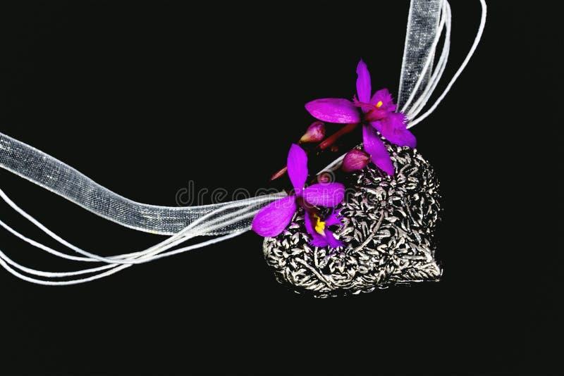 Orquídeas malva no medalhão de prata ornamentado com colar de Organza imagem de stock